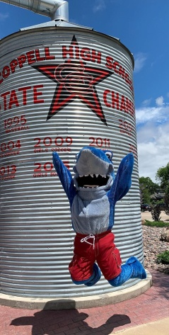 Shark Mascot at Coppell high school